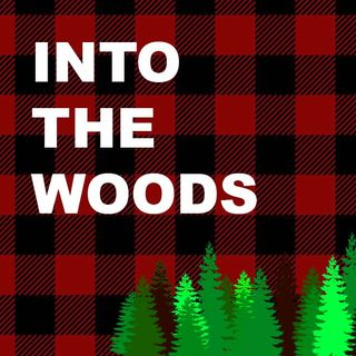 CiTR -- Into The Woods