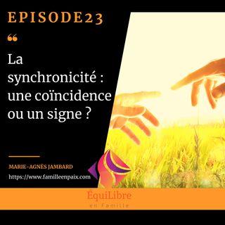 Episode 23 - La synchronicité : une coïncidence ou un signe ?