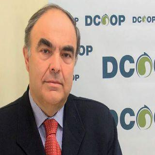 Hoy conocemos el mundo del aceite de oliva de la mano del Grupo DCOOP: primer productor mundial de este producto