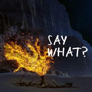Say What? - Yap Ken-ji