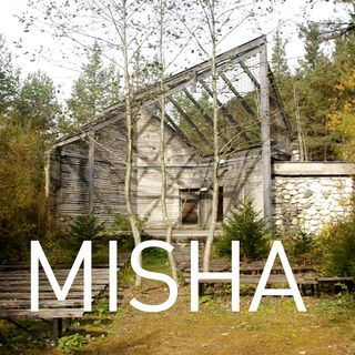 Chi ricorda l'orso Misha? Intervista con Caterina Shanta.