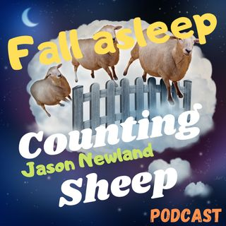 Fall ASLEEP Counting SHEEP - podcast