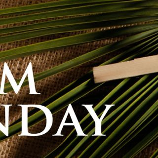 Palm Sunday Is Jesus Telling The World I Am The Messiah