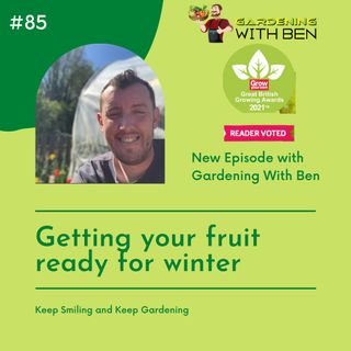 Episode 85 - Getting your fruit ready for winter in the garden and allotment