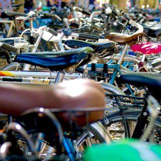 Movilidad urbana en bicicleta, con Alvaro Peñarrubia | Actualidad y Empleo Ambiental #31