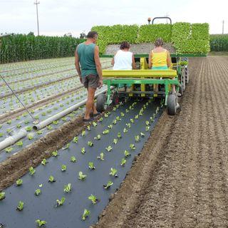 MaterAgro, Agricoltura e chimica verde alleate per clima e futuro dei contadini
