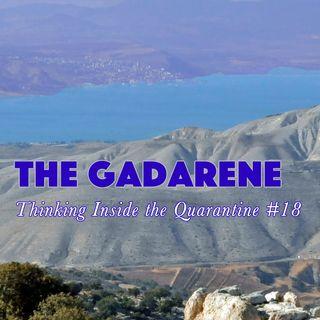 The Gadarene (Thinking Inside the Quarantine #18)