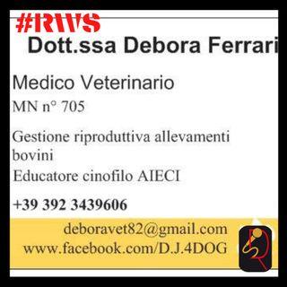 INTERVISTA DEBORA FERRARI - EDUCATRICE CINOFILA