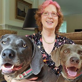 Tracie Hotchner talks #PetWellness, #NYDogFIlmFestival & more on #ConversationsLIVE