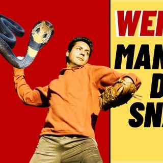 Man Throws Venomous Snakes At Wife - Weird News