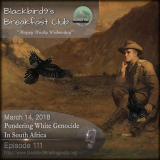 Pondering White Genocide In South Africa - Blackbird9 Podcast