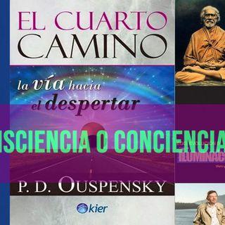 #160 ¿Buscamos Conciencia o Consciencia? (Podcast)