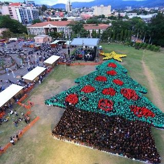 Hondurans get in the spirit with world record human Christmas tree