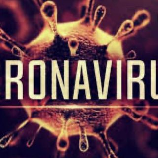 What you should know EP. 1 corona virus overview