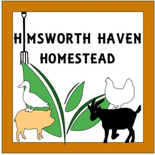 Himsworth Haven Homestead ep3 seed starting p3