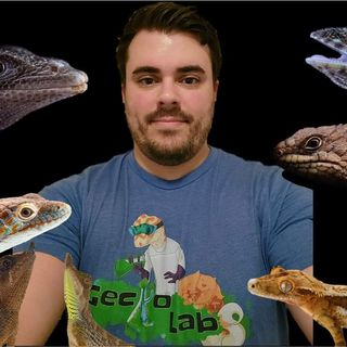 Episode 10: Dillon Damuth of Gecko Lab!