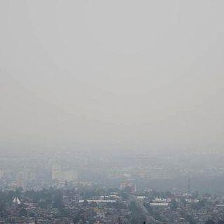 CNTE marcha pese a la contingencia ambiental