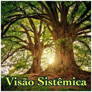 Visão Sistêmica - Teia da Vida