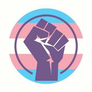24. O Brasil Assassino de Travestis! 29 de Janeiro - Dia da Visibilidade Trans