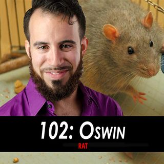 Oswin the Rat