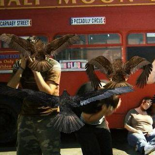 Episode 7 - Birdemic: Shock & Terror