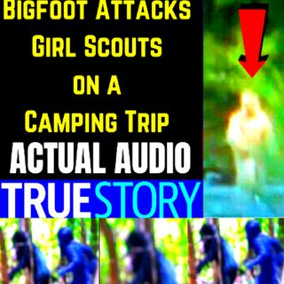 Bigfoot Attacks Girl Scouts on a Camping Trip ACTUAL AUDIO 🐵 Real Bigfoot Audio