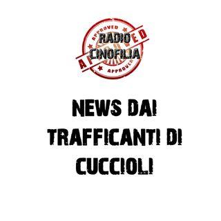 SIAMO IN DIRETTA RADIO - PARLIAMO DI TRAFFICI DI CANI