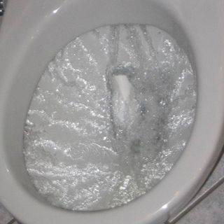 Do toliet flushes spin in a different direction due to changing hemisheres?