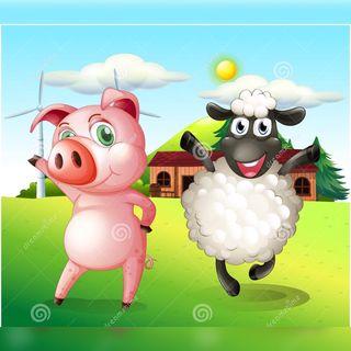 La Oveja y El Cerdo