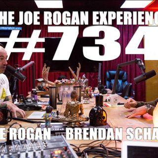 #734 - Brendan Schaub
