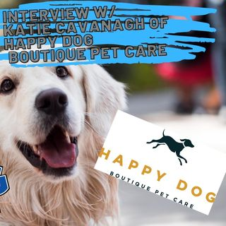 Interview with Katie Cavanagh of Happy Dog Boutique Pet Care