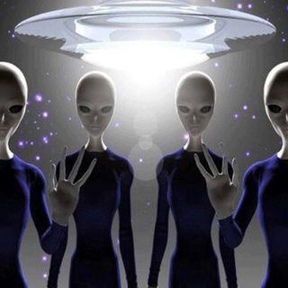#carpi Apocalisse aliena o troppi supermercati, dov'è il problema?