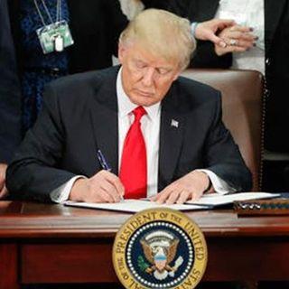 Backlash From Trump's Travel Ban (AKA Muslim Ban)