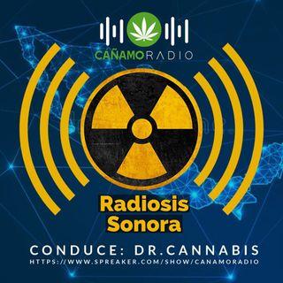 Radiosis Numero 2