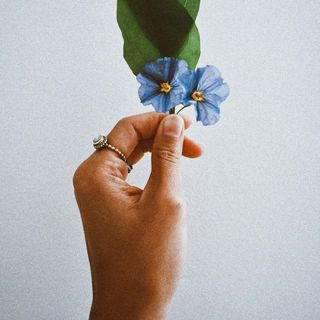 Épisode 5 | La beauté de la vulnérabilité