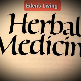 The ROLE OF VITAMINS ~ Herbal Medicine