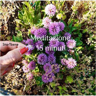 Meditazione del seme