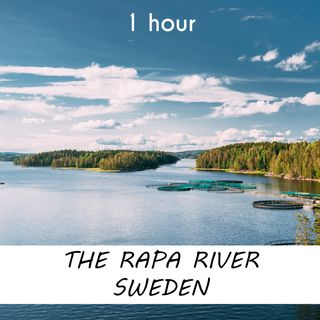 The Rapa River, Sweden | 1 hour RIVER Sound Podcast | White Noise | ASMR sounds for deep Sleep | Relax | Meditation | Colicky