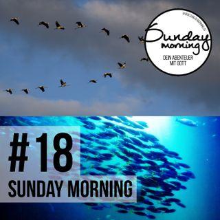 #18 - Von Fischen und Vögeln - Oder wie Friendship dein Leben durchdringt