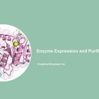 Enzymes for Blood Glucose Monitoring