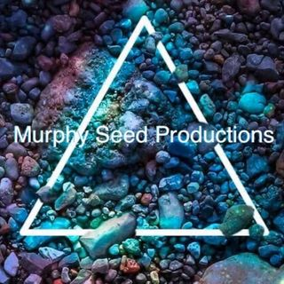Murphy-Seed--We On Time