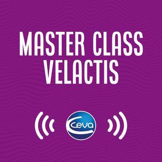 Master Class Velactis #03 Efeito da cabergolina no manejo e seu impacto econômico