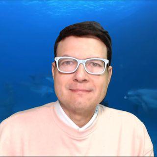 #45 Consciencia Delfínica y Cetácea para la elevación dimensiones superiores