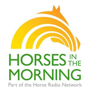 HORSES IN THE MORNING for May 22, 2015