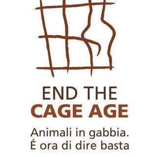 END THE CAGE AGE. BASTA ANIMALI IN GABBIA - tante info  e approfondimenti, musica