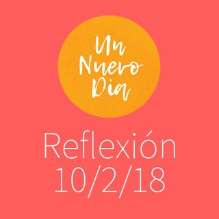 UND-reflex1