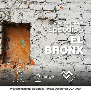 Hierbas al Bronx, Episodio 5