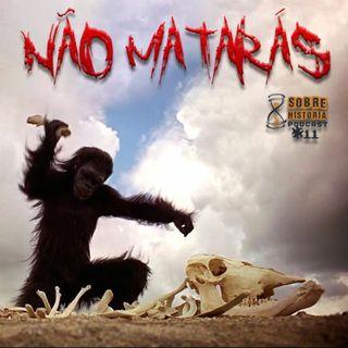SH 11 - Nao Mataras