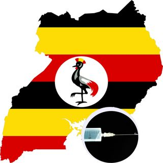 AFRICA :  800 In Uganda Received Fake  Coronavirus Vaccines