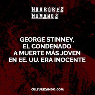 George Stinney, el condenado a muerte más joven en EE. UU. era inocente • Crimen y Terror - Culturizando